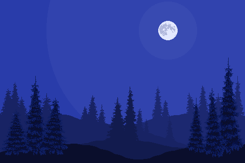 forest landscape (night)